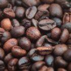 AgriData n°12 : les évolutions du marché mondial du café